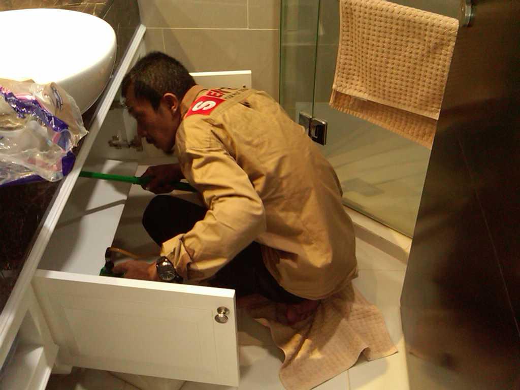 Jasa Pembasmi Tikus di Jakarta  28fb36f423