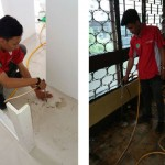 Cara Mengusir Rayap di Tembok dan Lemari Rumah
