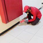 Jasa Pest Control One Time Service