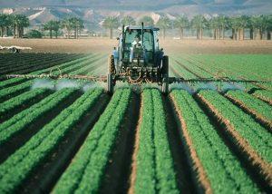 Jenis Pestisida Dan Fungsinya